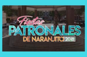 Fiestas Patronales De Naranjito 2018 @ Naranjito | Naranjito | Puerto Rico